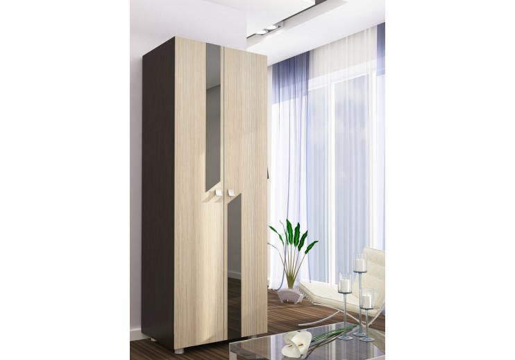 Гостиная Марта-7 шкаф (800х2000х500)