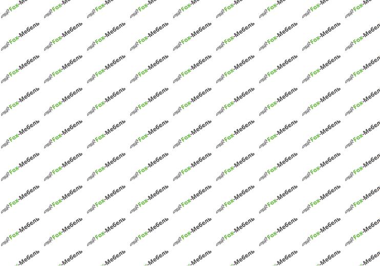 Шкаф-купе Феникс (1700х2100х520)